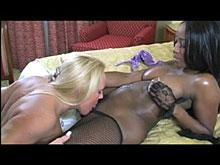 interracial lesbo
