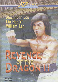 Revenge Of The Dragon II