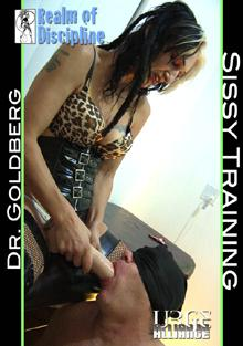 Realm of Discipline: Bisexual Sissy Training