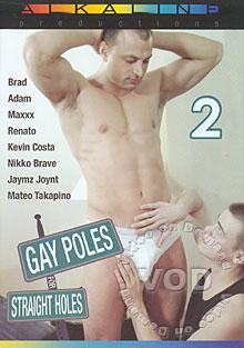 Gay Poles For Straight Holes 2